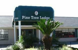 Pine-Tree-Assisted-Living-Pasadena